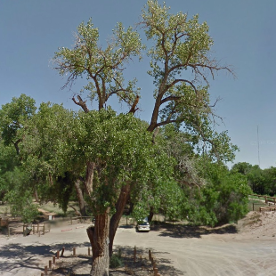 Rio Bravo Open Space