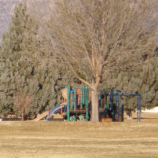 Stardust Skies Park