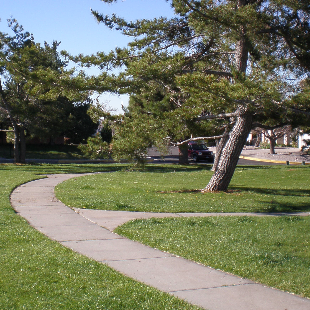 Bianchetti Park Image